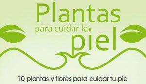 Plantas para cuidar la piel