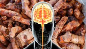 Así es como tu cerebro cambia físicamente cuando consumes cúrcuma entera