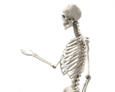 Hacen descubrimiento sorprendente: el magnesio, y NO el calcio, es la clave de los huesos sanos