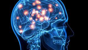 ¡Tu cerebro cambia físicamente cada vez que dices una mentira! Así es como sucede