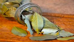 Quema unas hojas de laurel en casa y mira lo que sucede en sólo 10 minutos