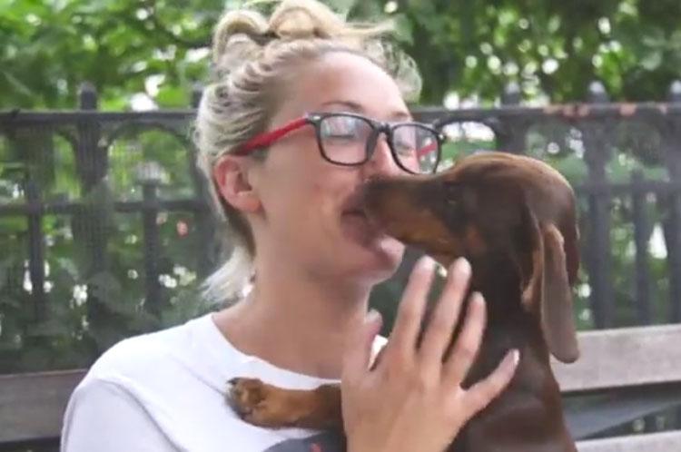 Los médicos están instando a no dejar que tu perro te lama. Esta es la razón