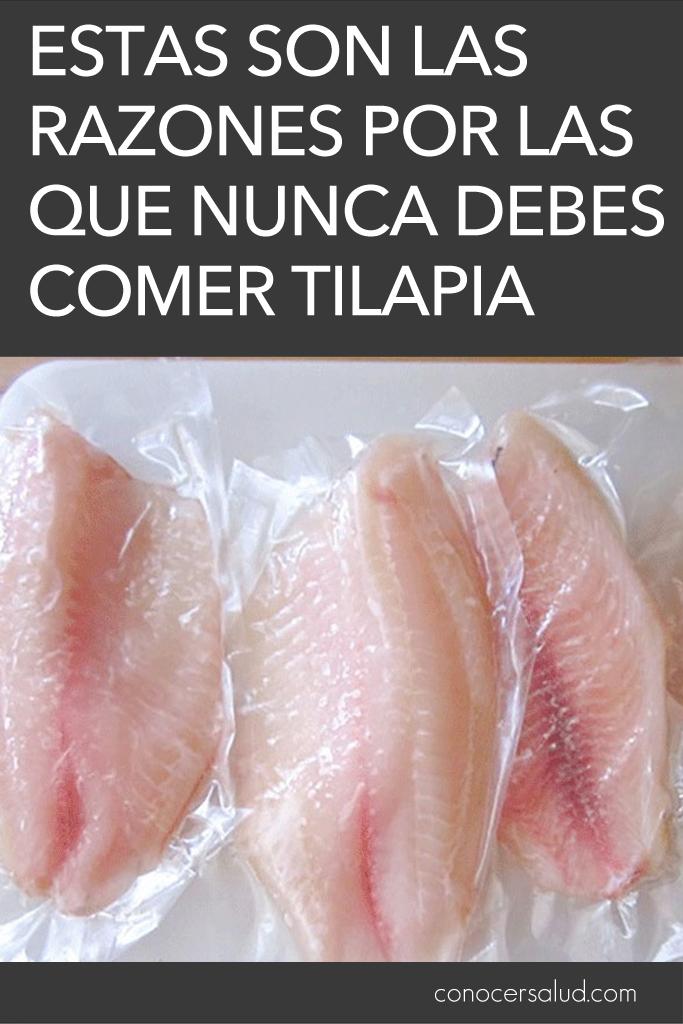 Estas son las razones por las que NUNCA debes comer Tilapia