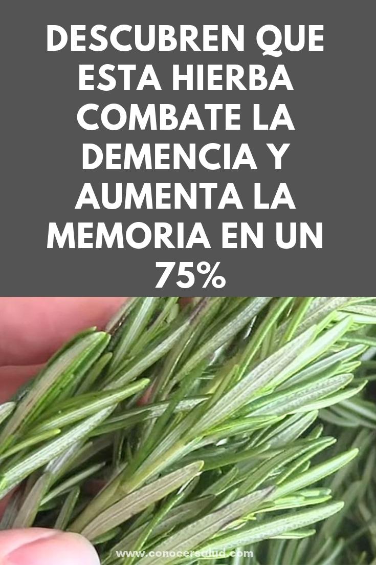 Científicos descubren que esta hierba combate la demencia y aumenta la memoria en un 75%