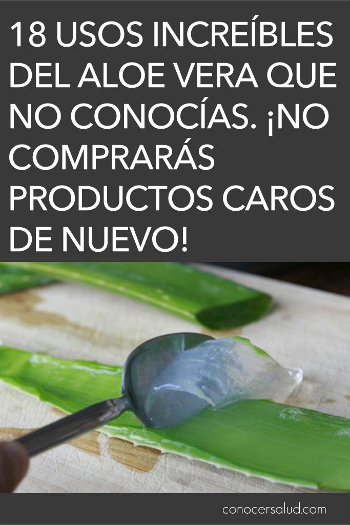 18 usos increíbles del Aloe Vera que no conocías. ¡No comprarás productos caros de nuevo!