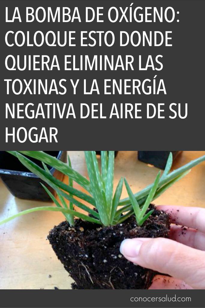 La Bomba de Oxígeno: coloque esto donde quiera eliminar las toxinas y la energía negativa del aire de su hogar