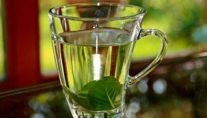¿Qué té o infusión es la mejor para la memoria?
