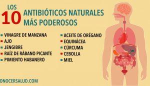 Los 10 antibióticos naturales más poderosos conocidos por la humanidad
