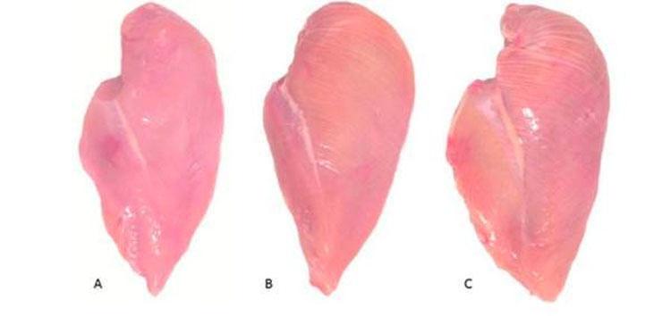 Si ve esto en las pechugas de pollo, vuelva a dejarlas inmediatamente donde estaban