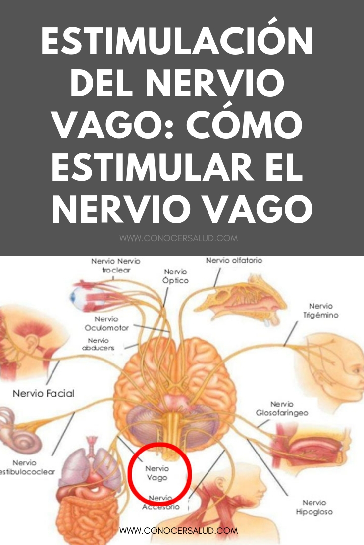 Estimulación del nervio vago: Cómo estimular el nervio vago