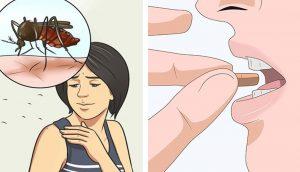 Tome esta vitamina para repeler los mosquitos durante todo el largo verano