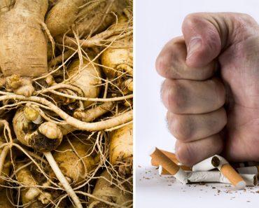 10 plantas que le ayudarán a dejar de fumar HOY