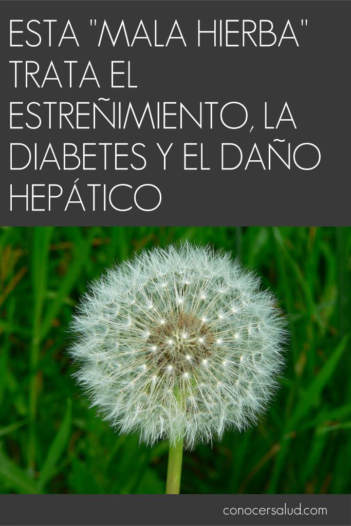 """Esta """"mala hierba"""" trata el estreñimiento, la diabetes y el daño hepático"""