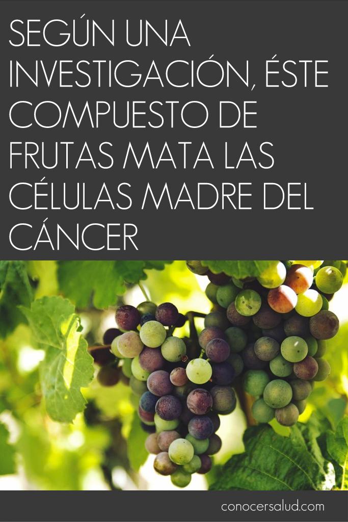 Según una investigación, éste compuesto de frutas mata las células madre del cáncer