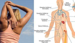 Este poderoso ejercicio drena el sistema linfático y estimula el sistema inmunitario