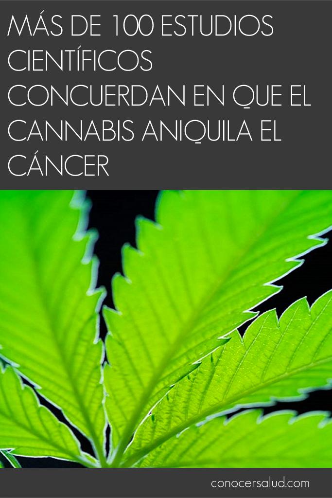 Más de 100 estudios científicos concuerdan en que el cannabis aniquila el cáncer