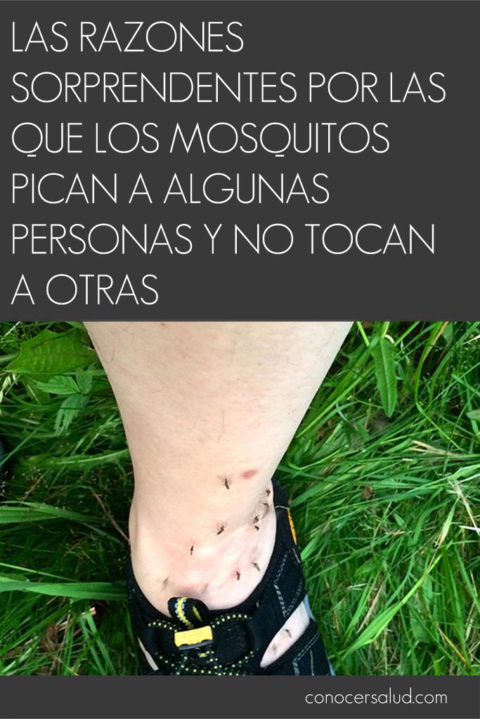 Las razones sorprendentes por las que los mosquitos pican a algunas personas y no tocan a otras