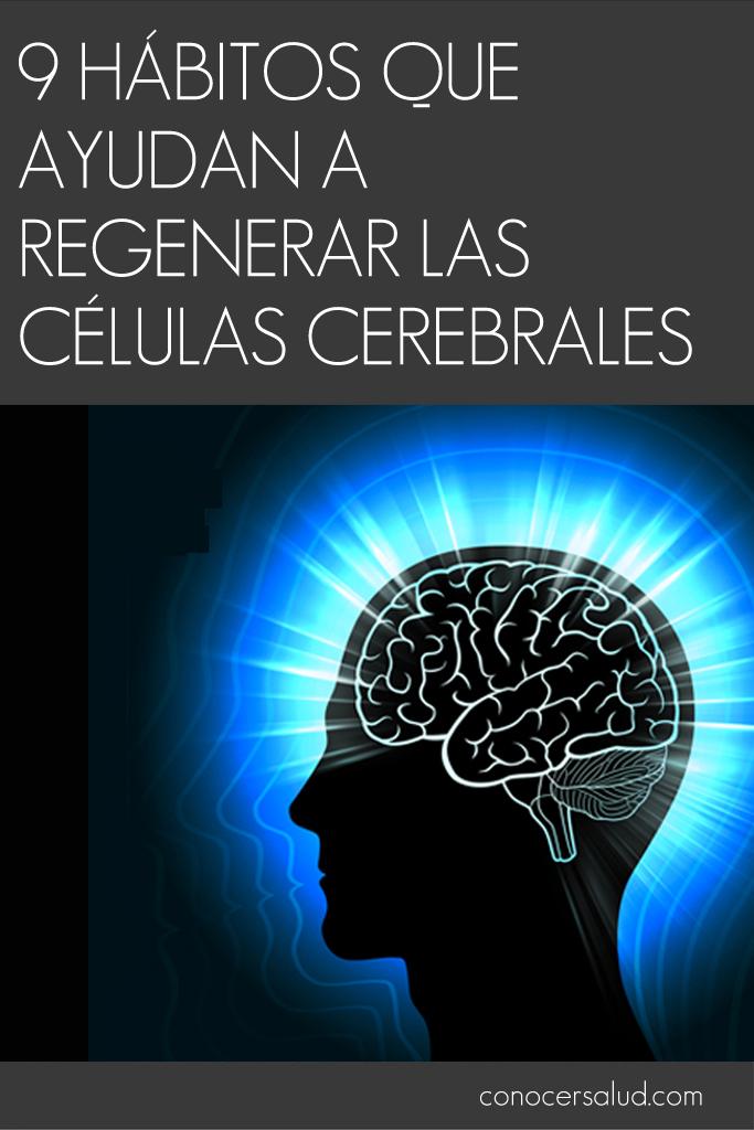 9 hábitos que ayudan a regenerar las células cerebrales