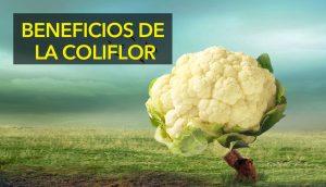 Cómo y por qué deberíamos comer más coliflor