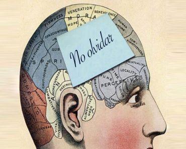 13 consejos útiles que le ayudarán a mantener su memoria fuerte y nítida