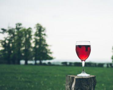 Nuevo estudio dice que una copa de vino tinto es equivalente a una hora en el gimnasio