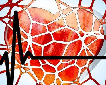 5 hierbas que pueden tratar la presión arterial alta