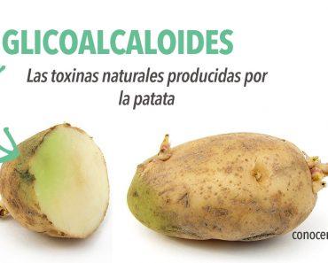 Consejos para el cuidado en la cocina: Sepa cuándo tirar sus patatas