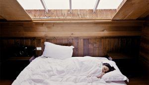 9 plantas de dormitorio que le ayudarán a dormir mejor