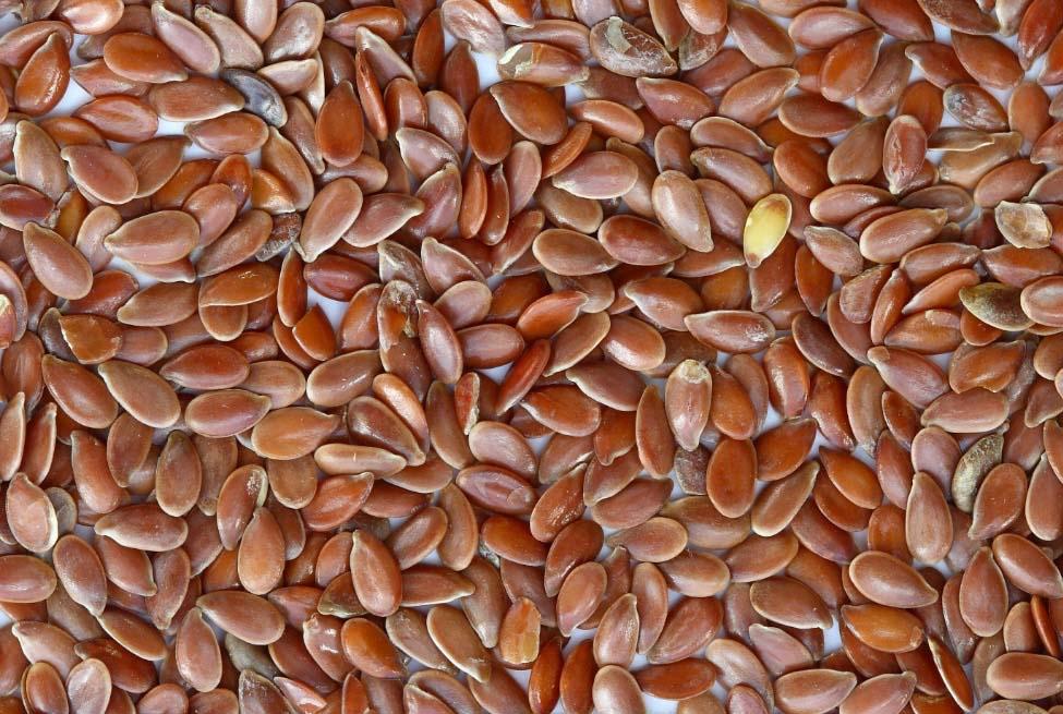 10 frutos secos y semillas saludables que debe comer regularmente