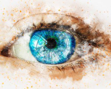 20 alimentos que debe probar para tener una visión mejor