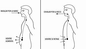 La ciencia explica lo que le sucede a su cuerpo cuando controla la respiración todos los días