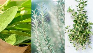 10 hierbas que pueden ayudar a luchar contra el cáncer