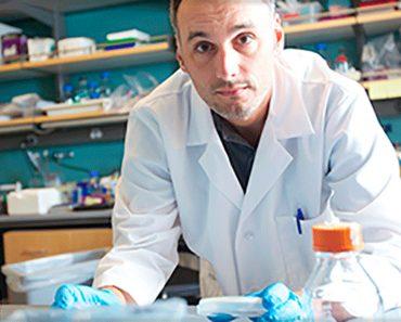 Científicos descubren que el ayuno desencadena la regeneración de células madre y combate el cáncer