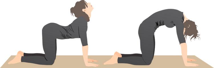 8 estiramientos de la ciática que previenen y alivian el dolor de cadera y espalda baja