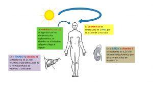 5 señales y síntomas de la deficiencia de vitamina D