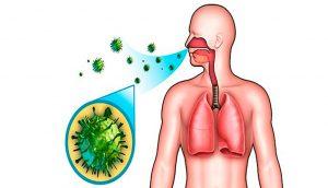 11 alimentos alcalinos que combaten las enfermedades crónicas y la inflamación