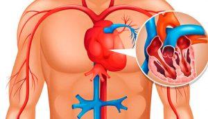 10 alimentos que debe comer diariamente para limpiar y no obstruir las arterias