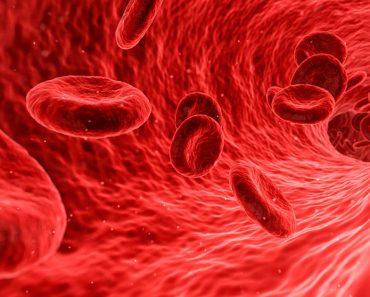 15 alimentos que ayudan a limpiar su sangre naturalmente