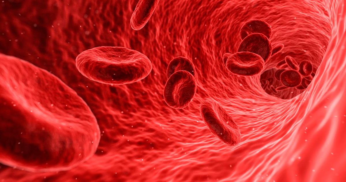 purificare sange