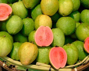 20 razones por las que la guayaba es realmente la super fruta definitiva