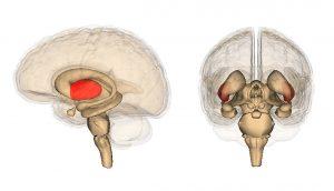 9 maneras simples de fortalecer su cerebro cada día
